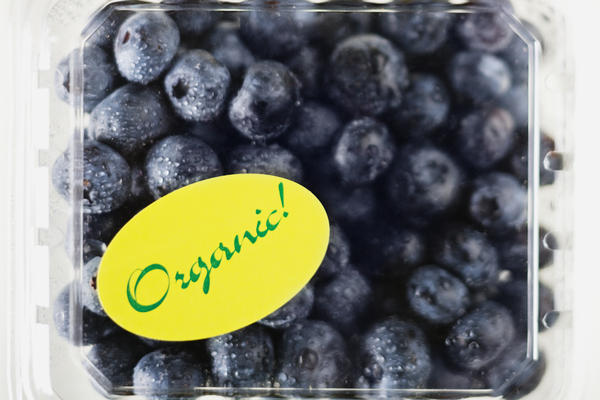Is it possible to have too many antioxidants? I eat a lot of blueberries and am wondering if it can have a reverse affect?