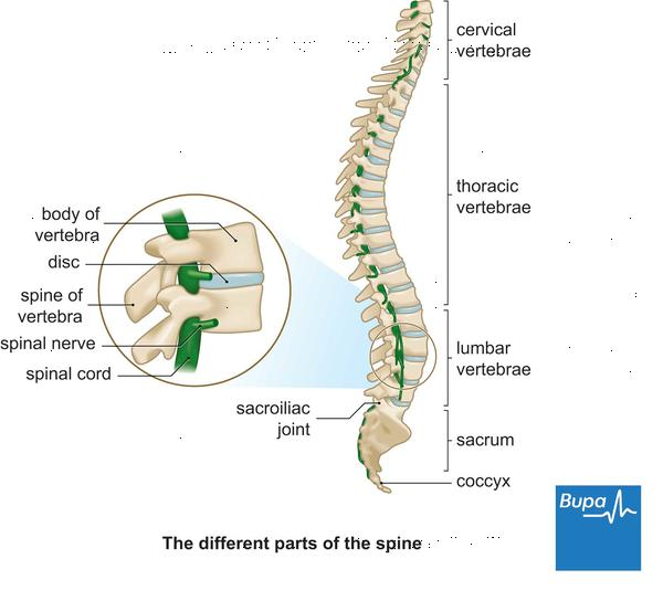 Upper back pain and swollen lymph nodes?