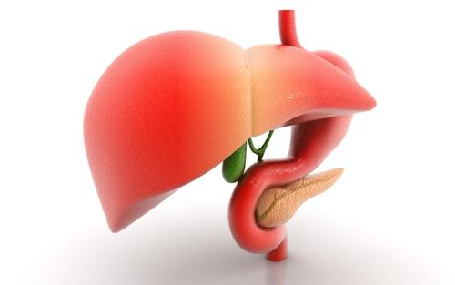 What will happen if a person is having enlarged liver. Does it cause any harmful symptoms. Does this lead to liver cancer?