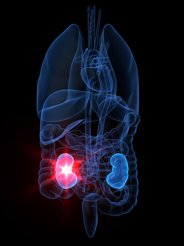 What are some of the symptoms of chronic renal failure?
