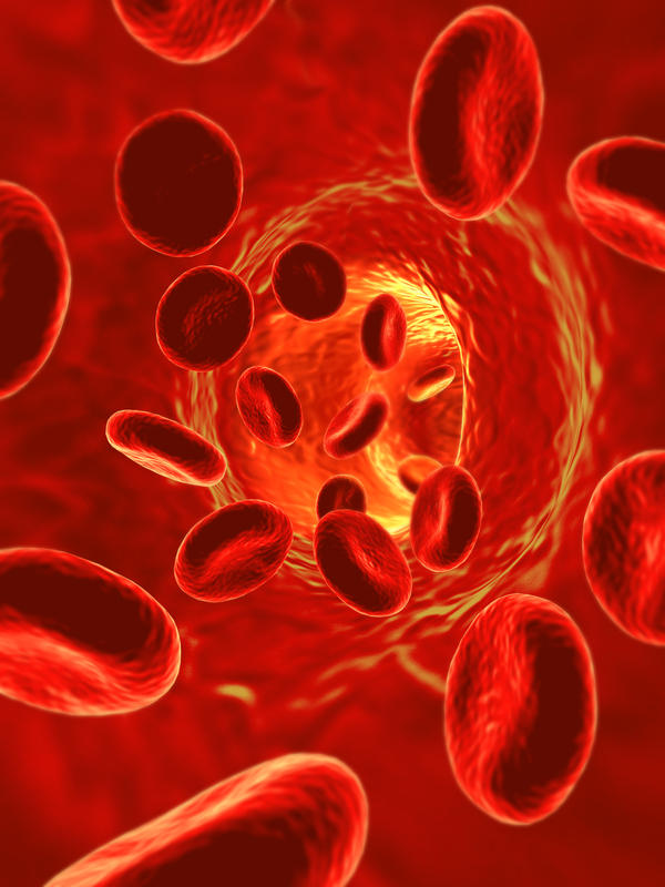 What blood tests would indicate a Myeloproliferative disorder?