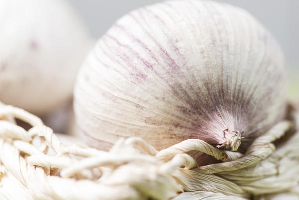 Hi doc ! is it ok to take oderless garlic 2mg with sertaline? Thank you.