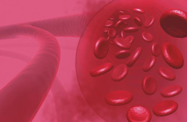 How are blood cells counted in a hematology report?