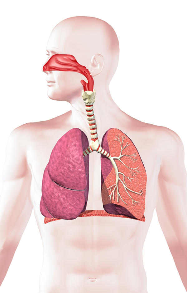 What effect does oxygen from an oxygen generator have on the respiratory system?