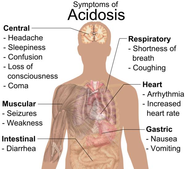 Does food change lactic acidosis levels?