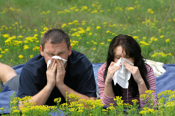 How can I stop my eye and nose allergies in the spring?