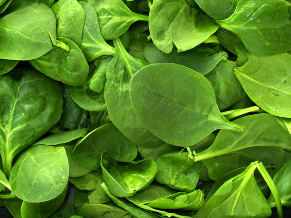 Is 3-4 cups of raw spinach or kale per day in a smoothie too much? I've heard the oxalates can be dangerous.