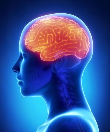 How long is a fellowship for neurosurgery?
