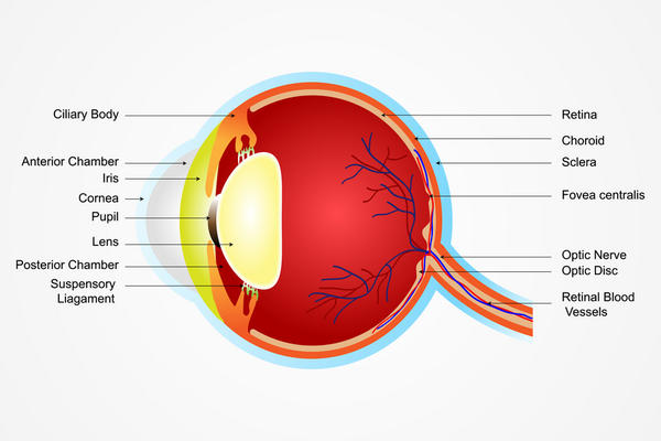 I have floaters and started seeing a green spot in my left eyes vision and a red one in my right eye. I only see them when looking to my left or right?