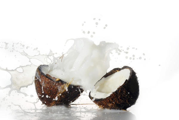 Does coconut water turn into hemlock?