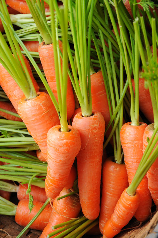 Are beta-carotene supplement  dangerous ?