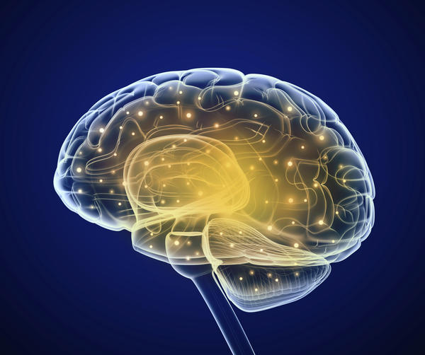 Can alcoholic drink or physical damage, damage the cerebellum?