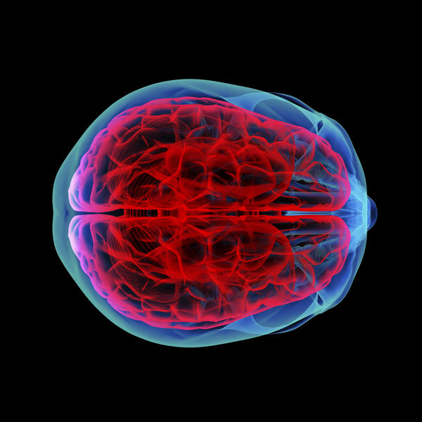 What does cerebellar degeneration mean?