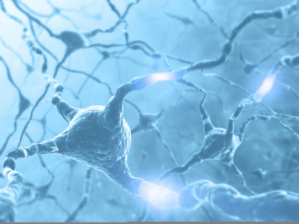 Are there any neurotransmitter imbalances that would cause muscle twitching all over body?