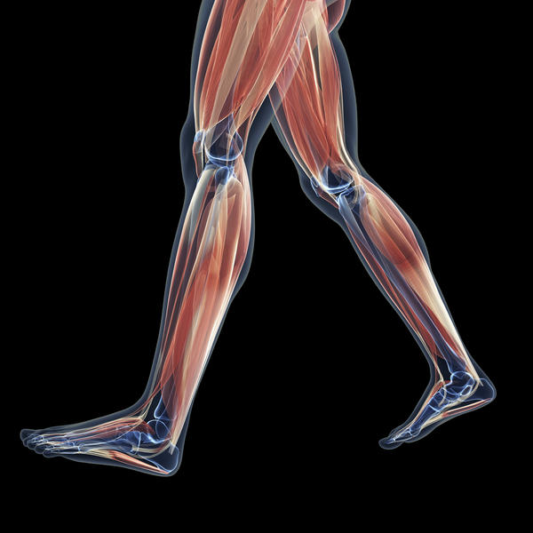 What does it mean to have bad muscle cramps in back calves every morning?