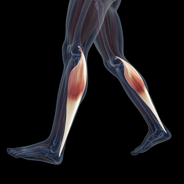Does the spasm of femoral muscles cause a pain around the knee joint. ..Specially during walking and during knee flexion? And to deal with this pain