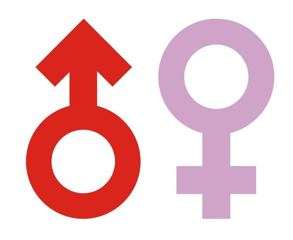 Will same gender sex affects male reproductive system  or any organs?