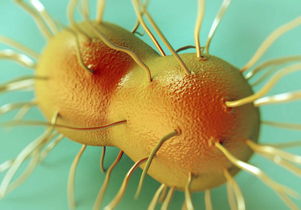What is viral meningitis?