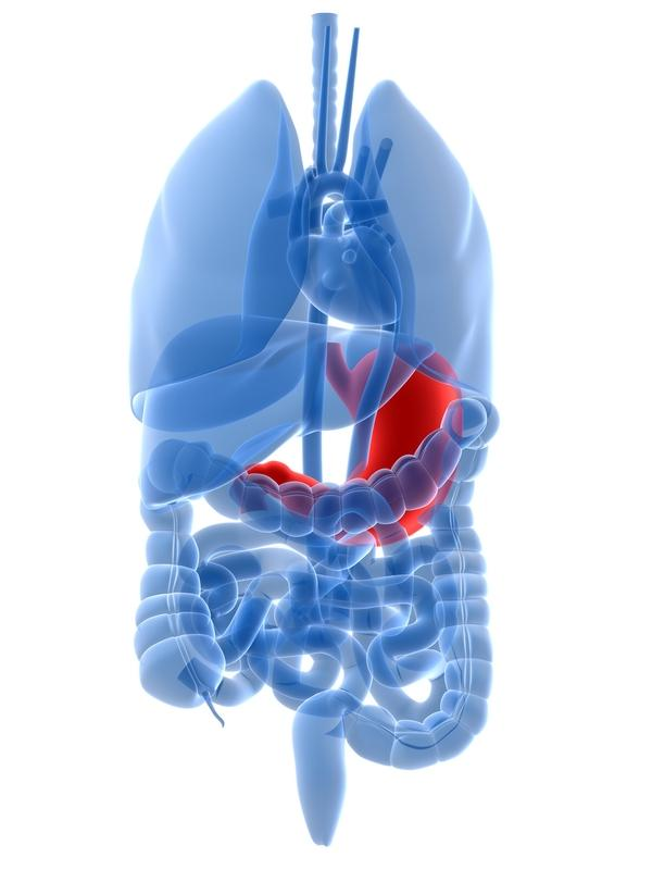 Gastroparesis related to hashimoto disease?