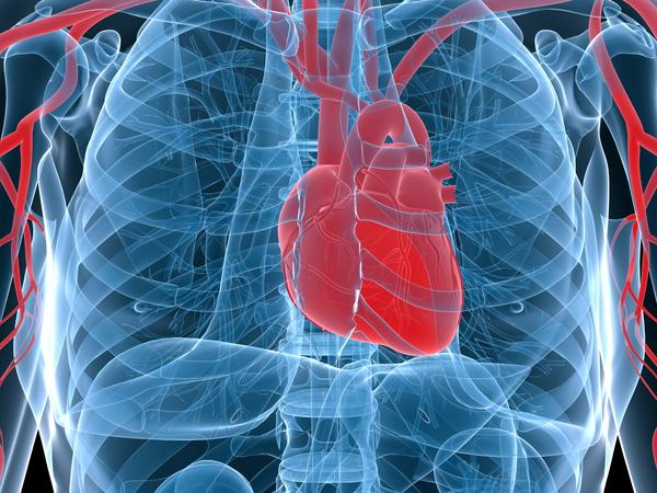 What is Heart diseases a risk factor for?