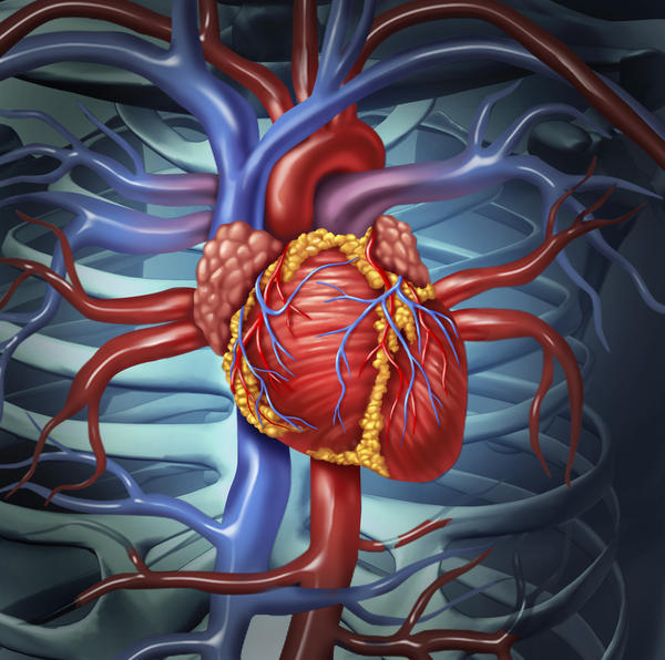 What are the names of the valves that separate the ventricles from the aorta and the pulmonary artery?