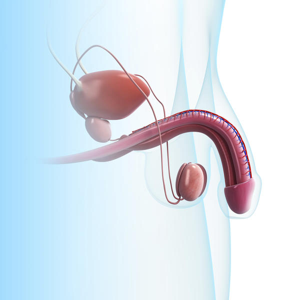 What are the treatments for an enlarged urinary bladder?