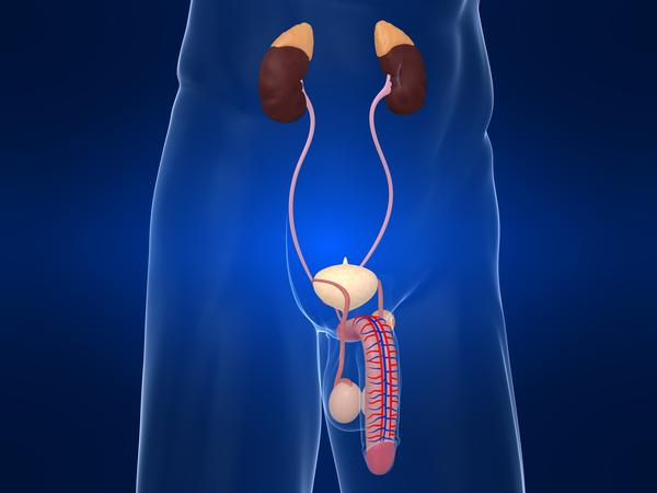 Who is at risk from bladder cancer?