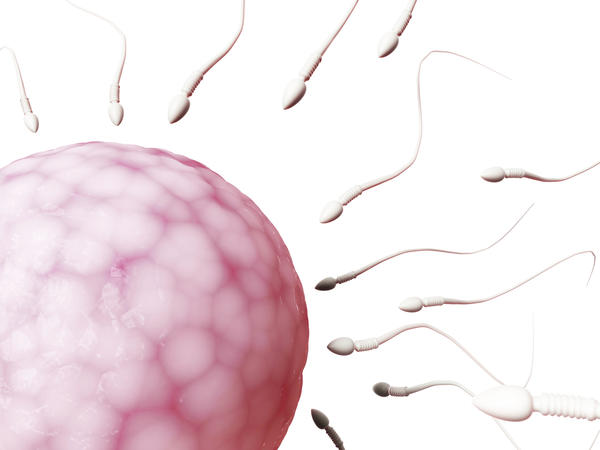 Will hot water and soap kill sperm?  How long can sperm live?