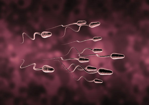 Can sperm travel trough clothes  during dry humping & make pregnancy?