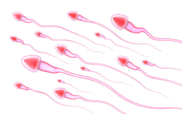 What is abnormal spermatozoa?