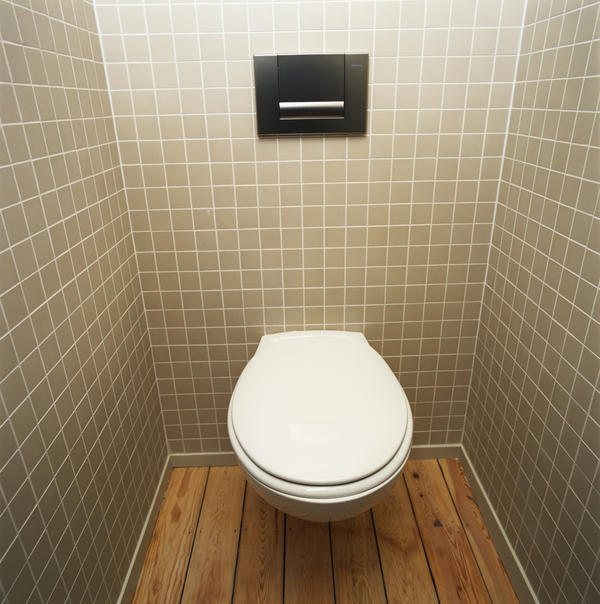 Are viruses contagious through toilets?