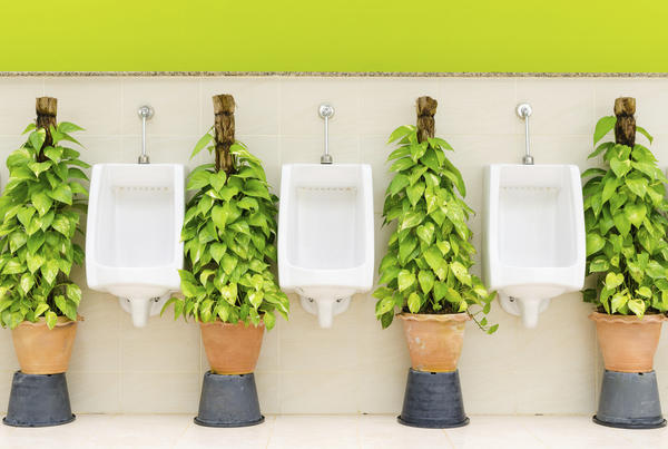 Do you urinate frequently when you are losing weight?