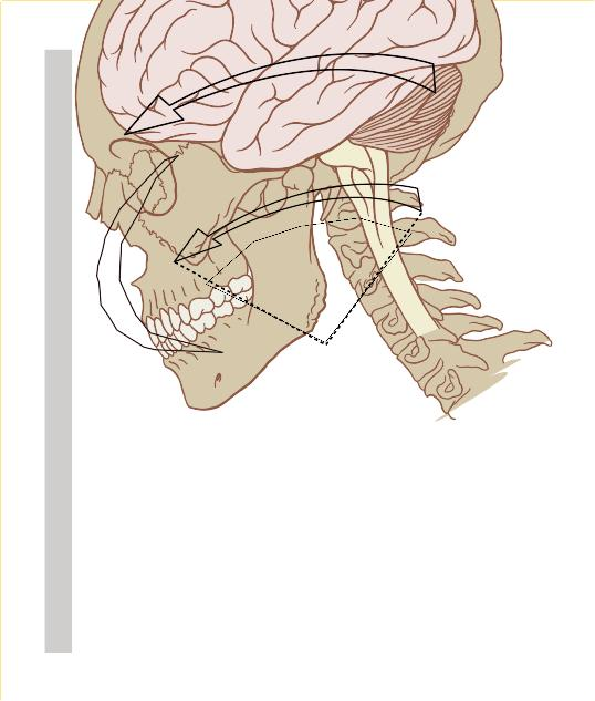 I'm going into wk 4 of concussion. New symptom today : a fluttering noise in my ears accompanied by pain at the top/back of my head. Is this normal?