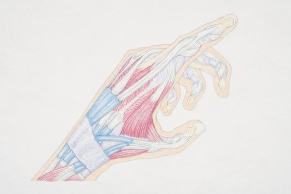 How do I know ulnar ligament is healed?