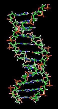 What are the causes of gene mutations in chromosone 4?