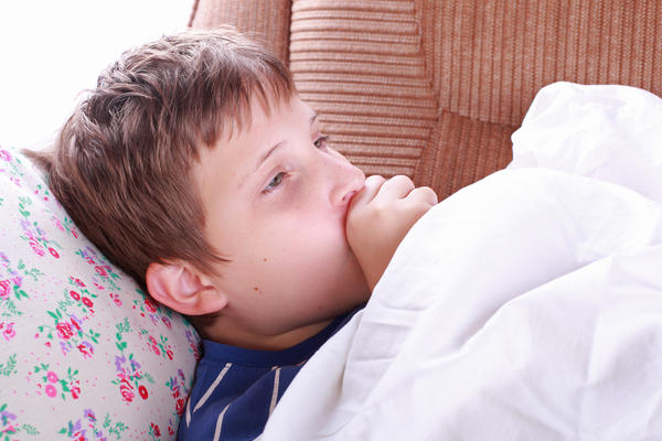 What is the vector of pertussis (whooping cough)?