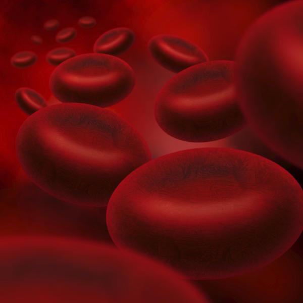 What could cause high protein and high red blood cell count in blood test?