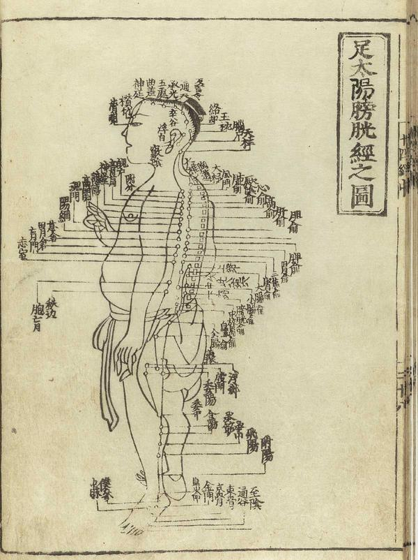 How will i know what does acupuncture do?