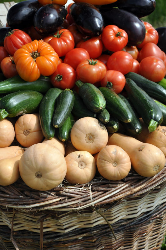 Which vegetables are the healthiest, in terms of nutrient content?