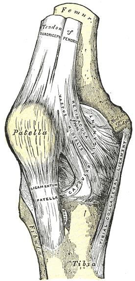 What does neutral position lateral subluxation of the patella approximately 6mm mean? What is spur formation of the lateral facet mean?
