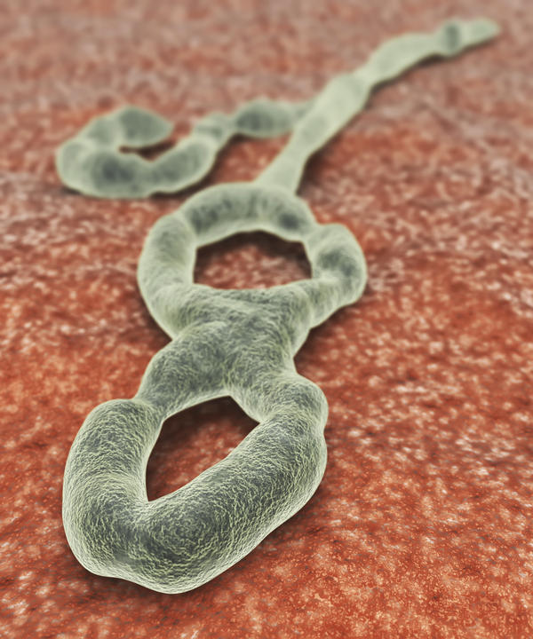 Is there a cure or treatment for Ebola?