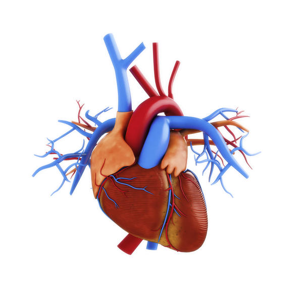 Is angina pectoris deathly?
