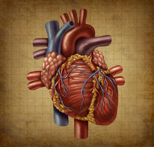 What are the symptoms of clogging arteries with heart disease?