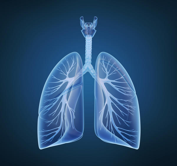 What does cystic fibrosis do to the pulmonary system on a cellular level?