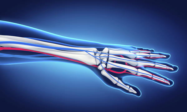 What can I do to quickly regain arm muscle mass?