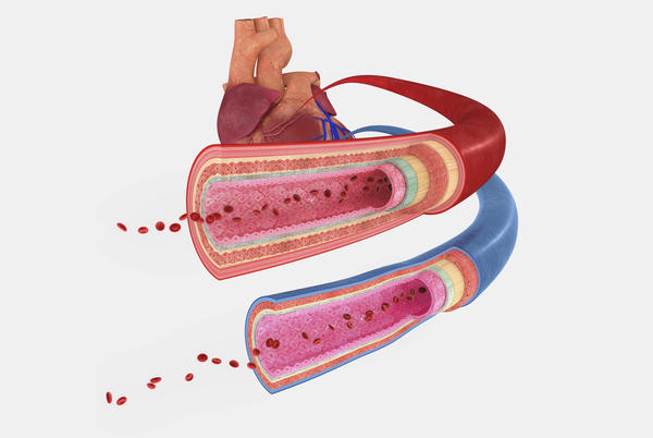 What is the difference between arterial hypertension and pulmonary hypertension?
