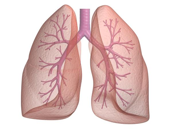 What is the cause of asthma?