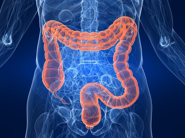 What does protein loss from small bowel mean?