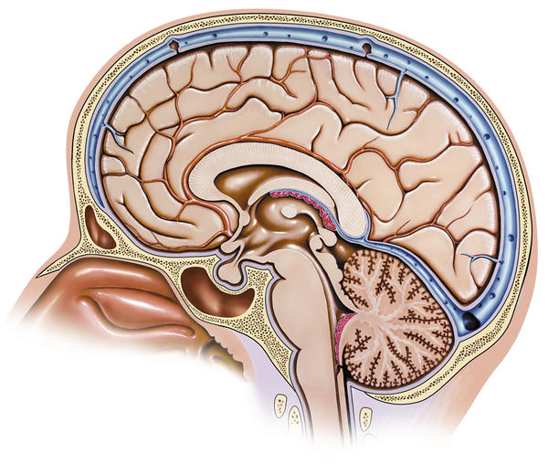 Does a constant twitch in left eye +headache mean possible reoccurrence of brain tumor? I have a history of tumor in right occipital lobe.