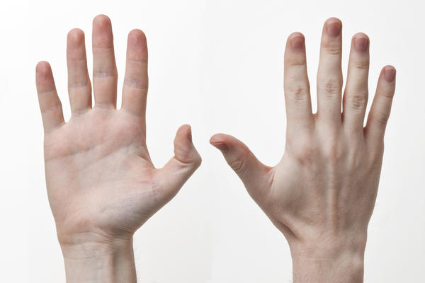 Can you tell me if there are any nerves or pressure points in your hand?